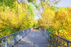 Bridge in autumn park Royalty Free Stock Image