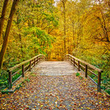 Bridge in autumn park Royalty Free Stock Photo