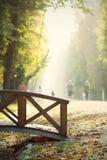 Bridge in the autumn park Stock Images