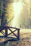 Bridge in the autumn park Stock Image