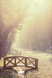 Bridge in the autumn park Royalty Free Stock Images