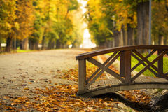 Bridge in the autumn park. Wooden bridge in the autumn park Royalty Free Stock Photo