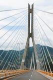 Bridge baluarte Royalty Free Stock Photography