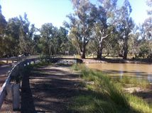 Bridge in Barmah forest. Stock Images