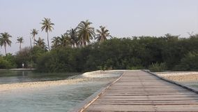 Bridge and beach, palm trees and shrubs. Maldives video. Horizontal stock video
