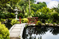 Bridge in a Beautiful Garden at Monte above Funchal Madeira. This wonderful garden is at the top of the cablecar from the seafront in Funchal. It is filled with Royalty Free Stock Photo
