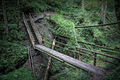 Bridge on a Black Forest hiking trail through the Wutachschlucht, Germany Stock Photo