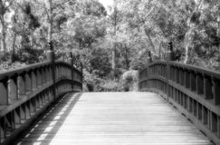 Bridge in Black and White. Digital infrared treatment applied to scenic ornate wooden bridge. View from crossing the bridge to the garden's white foliage on the Stock Photo