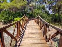 Bridge built with logs in the interpretation center of the Albufera de Valencia and the lagoon that can be visited next to the. Path between nature, summer stock image