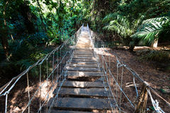 Bridge in Burkina faso. Burkina faso, hanging suspended bridge in the jungle stock photos