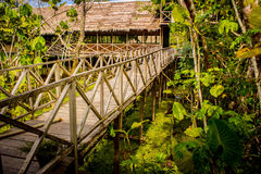 Bridge and cabin at Amazon River Jungle Royalty Free Stock Photography