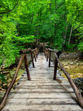 Bridge in canyon Royalty Free Stock Images