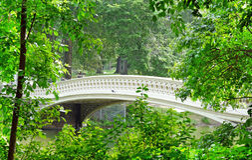 Bridge central park nyc Stock Photo