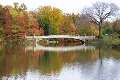 Bridge in Central Park Stock Image