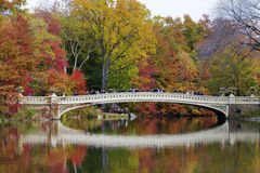 Central Park in fall time Stock Photo
