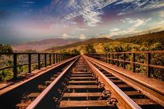 Bridge, Clouds, Forest stock photos