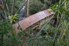 Bridge in Colombia Stock Photos