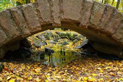 Bridge and color leaves in Autumn Royalty Free Stock Photos