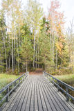 Bridge in colorful autumn forest Royalty Free Stock Photos