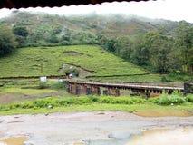 BRIDGE TOWARDS GREEN stock images