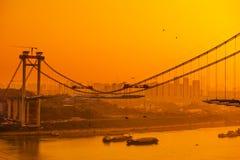 Bridge construction and pigeon stock photography