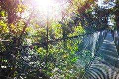 Bridge in Costa Rica Stock Photos