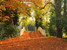 Bridge covered in fallen leaves Stock Photography