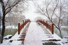 A bridge covered by a heavy snow Royalty Free Stock Image