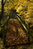 Bridge. Creek and bridge in the autumn in the forest Royalty Free Stock Image