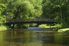 bridge den sceniska floden Royaltyfri Foto
