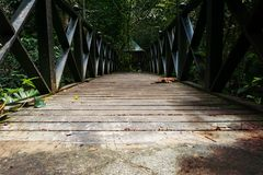 Bridge with Diminishing Perspective. Low angle view of a bridge with diminishing perspective royalty free stock photo