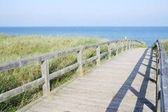 Bridge through the dunes Stock Image