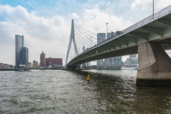 The bridge Erasmusbrug also known as swan bridge in Rotterdam Royalty Free Stock Images