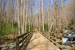 Bridge of Exploration Stock Photo