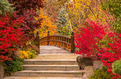 A bridge from fairytale Royalty Free Stock Photo