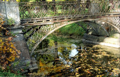 Bridge and fallen leaves Stock Images