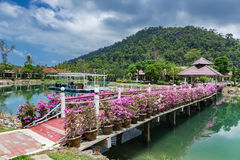 Bridge with flowers across the bay in a tropical garden Royalty Free Stock Photo