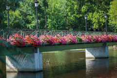 Bridge with flowers Stock Image