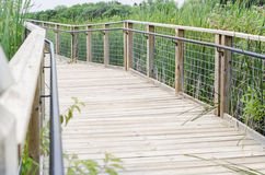 Bridge Footpath over Swamp in Park Stock Photos