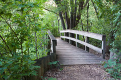 Bridge in the Forest stock photos