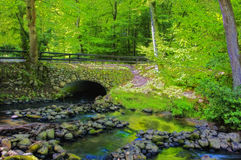 Bridge in forest Royalty Free Stock Photography