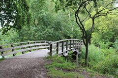 Bridge in forest Royalty Free Stock Photos