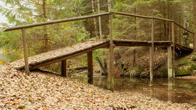 Bridge in the Forest. Autumn daytime. Smooth dolly shot.  stock footage