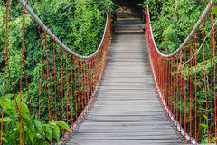 Bridge in forest Royalty Free Stock Photo