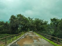 bridge in forest in monsoon royalty free stock image