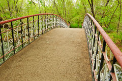 The bridge in the forest Royalty Free Stock Photo