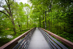 Bridge through a forested area at Towson University, in Towson, Stock Images