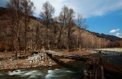 Bridge in the forests. North Mountain National Forest Park, formerly known as mutual Kitayama Forest, in the construction field in 1959, after 40 years of Royalty Free Stock Images