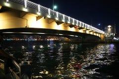 bridge galataen Istanbul är en av de 81 städerna av staden och landet i Turkiet royaltyfri bild