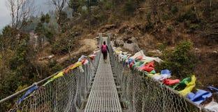 Bridge the gap. Everest Nepal Himalaya track Spring 2012 Stock Photo